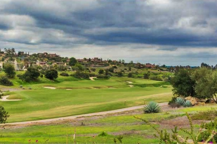 Santaluz Real Estate golf course view