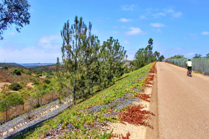 Carmel Valley Real Estate 56 Bike Path