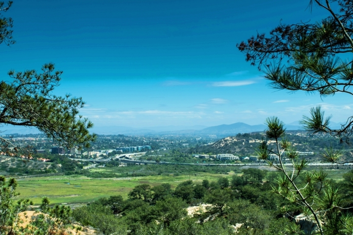 Carmel Valley Real Estate view from Torrey Pines