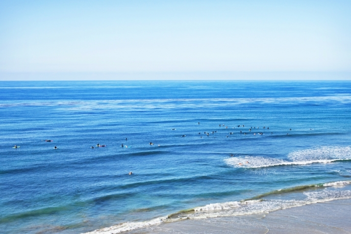 Encinitas Real Estate Swamis