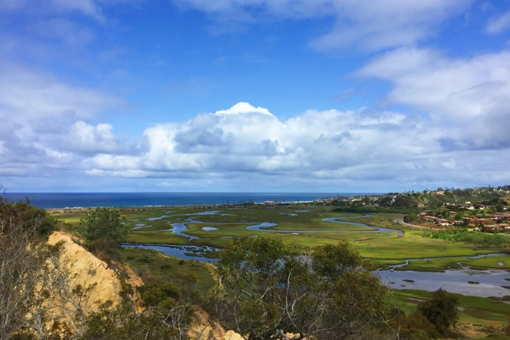 Cardiff By The Sea Real Estate San Elijo Lagoon