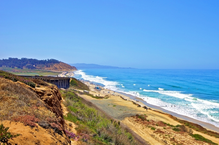Del Mar Real Estate Torrey Pines State Beach